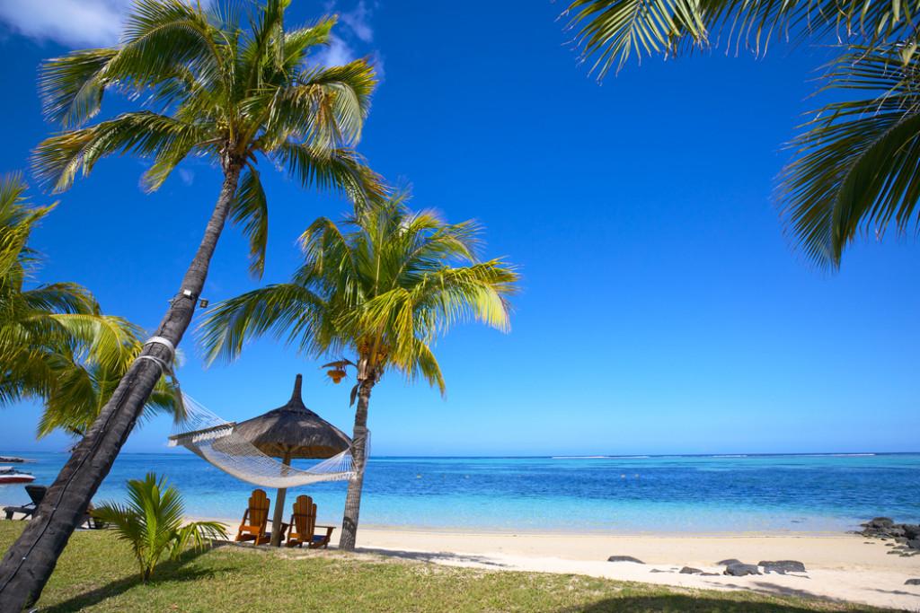 Tag et afbræk fra studielivet; rejs til Mauritius